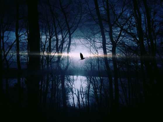 moonlight stockphoto
